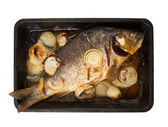 Grilled carp on griddle over white — Stock Photo