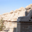 Ram-headed sphinxes at Karnak temple — Stock Photo