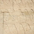 Hieroglyphic  in the Temple of Karnak — Stock Photo