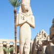 Statue of Ramses II in Karnak — Foto Stock