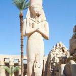 Statue of Ramses II in Karnak — Stock Photo