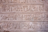 Hieroglyphic relief in Karnak — Stock Photo