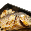 Grilled carp fish on the griddle — Stock Photo #3111032