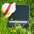 Stock Photo: Notebook on the Grass