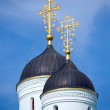 Orthodoxy domes — Stock Photo