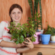 Woman with flowers in the pot — Stock Photo