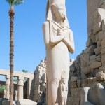Statue of Ramses II in Karnak temple — Stock Photo