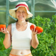 Woman witrh tomato in  hothouse — Stock Photo