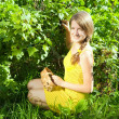 Girl picking currant — Stockfoto #3579156