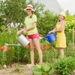 Two women watering flowers — Stock Photo