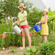 Two women watering flowers — Stock Photo #3580881