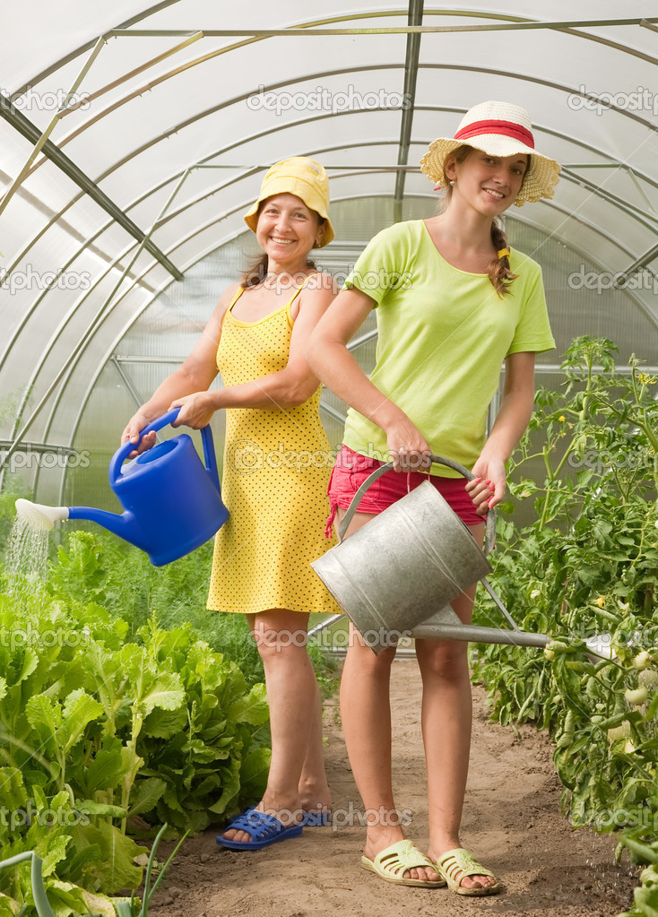 Women watering vegetables with watering can in hothouse — Stock Photo #3580903