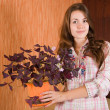 Girl with oxalis — Stock Photo #3816216