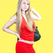 Sexy woman with purse — Stock Photo