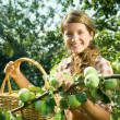 Young farm girl picking apple — Stock Photo