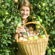 Young  girl picking apples - Stock Photo