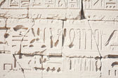 Hieroglyphic relief in the Temple of Karnak — Photo