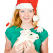 Girl with pet rabbits — Stock Photo