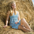 Girl resting on hay — Stock Photo #4107754