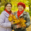 Mother with adult daughter in autumn — Stock Photo #4110297