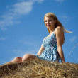 Stock Photo: Girl on top of hay bail