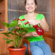 Woman with  anthurium in flowering po — Stock Photo