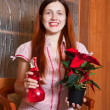 Young woman with Poinsettia flowers — Stock Photo