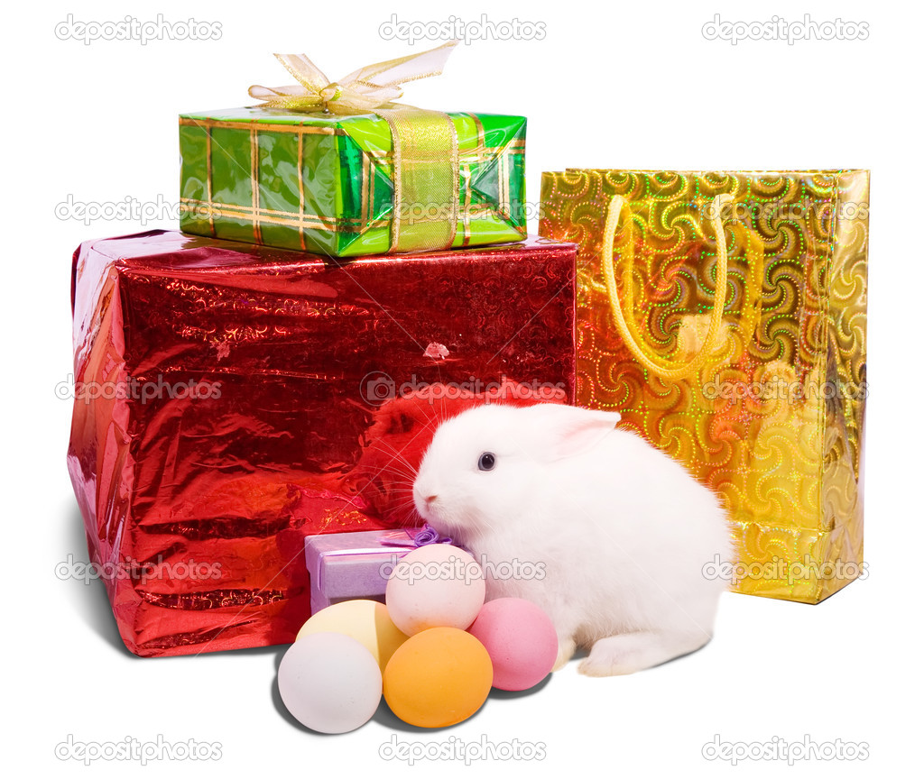 White easter rabbit with gifts. Isolated on white background  — Stock Photo #4612398