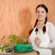 Stock Photo: Female gardener with seedlings