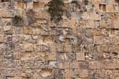 Ancient stone wall texture — Stock Photo