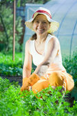 Woman in plant of carrot — Stock Photo