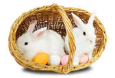 Easterrabbits in basket with eggs — Stock Photo