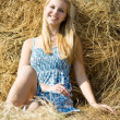 Country girl on hay — Stock Photo #4832312