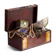 Foto Stock: Treasure chest