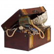 Treasure trunk — Stock Photo
