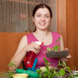 Young woman with various seedlings — Stock Photo