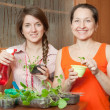 Two women with sprouts — Stock Photo #5152571