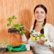 Woman with various seedlings — Stock Photo #5152594