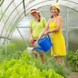 Women watering vegetables — Stock Photo #5156859
