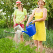 Women watering with watering pot — Stock Photo