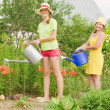 Two women watering flowers — Stock Photo #5156883