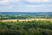View of summer landscape — Stock Photo
