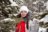 зимний портрет gir — Стоковое фото