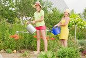 Two women watering flowers — Stock Photo