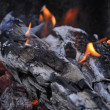 Burning out logs — Stock Photo