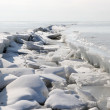 Frozen Winter sea, the crack in the ice — Stock Photo #2804152