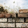 Stock Photo: Old brick wall against blue sky
