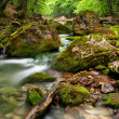 Royalty-Free Stock Photo: River deep in mountain