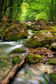 River deep in mountain — Stock Photo