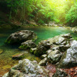 River deep in mountain forest — Stock Photo #3280837